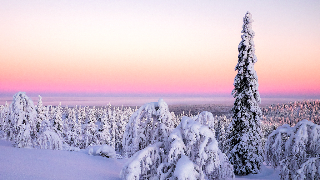 The authentic Lapland atmosphere is impossible to fake.
