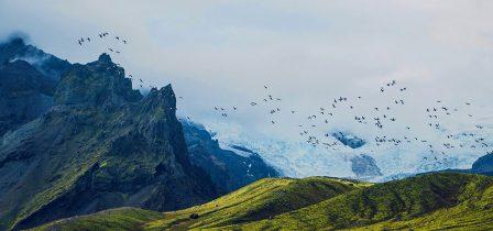 Seven wild wonders of Iceland