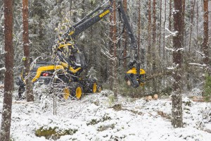 Harvester at work. Photo: Erkki Oksanen