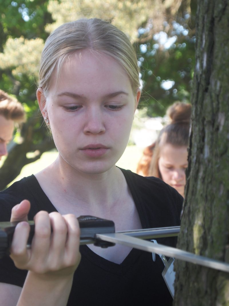 Forest Quiz 2016 finalist Kaisa Mikander measures the thickness of a tree at the University of Helsinki Department of Forest Sciences. Photo: Hannes Mäntyranta